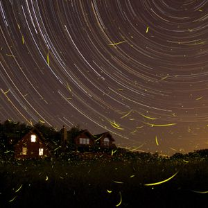 Scottie X - Summer Nights ( Deep House Promos )
