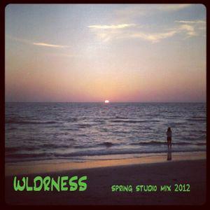 wldrness spring studio mix 2012