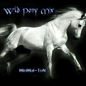 Wild Pony Mix