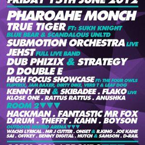 True Tiger Mix for Vagabondz @ Proud2 15.06.12