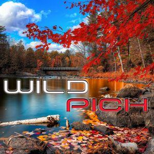 Wild Pich - Autumn Mixtape