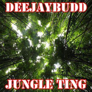 DeeJayBudd - Jungle Ting