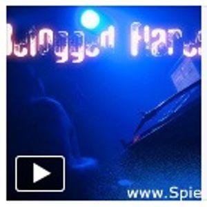 Blaues Licht - Promo Mix - Befogged Flares - 11.2011