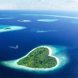 "OLIVETRONIK  "" HEART ISLAND """