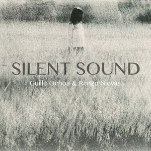 Silent Sound - PCM Radio (Bs.As) P2 Live Noviembre 2014