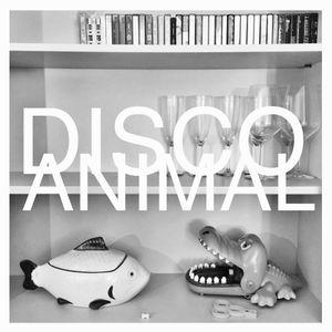 DISCO ANIMAL