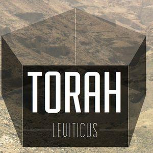 Torah, Pt. 25   Rest, Release, Redemption (Audio)
