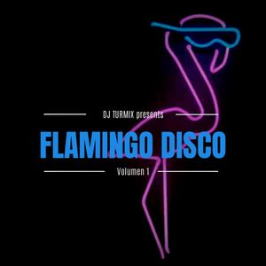 Flamingo Disco (IG Live set)