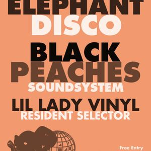 Black Peaches Soundsystem for Elephant Disco