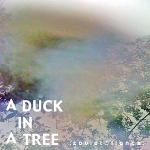 A Duck in a Tree 2013-01-26 | This Stranger's Kiss, This Red Moon