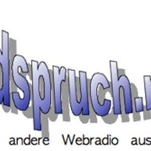 rundspruch.net - Interview Puhdys (Quaster, Bimbo), 28.06.2013, Stadtpark Hamburg
