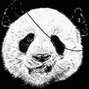 2017.01.02 Happy New Year (FINIQUE Panda)