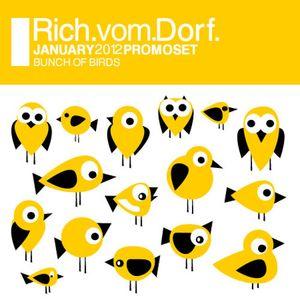 Rich Vom Dorf - promoset 0112 bunch of birds