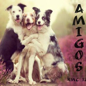 NMC #126 - Amigos
