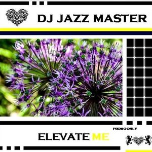 DJ Jazz Master - Elevate Me 01.17. Radio Mix
