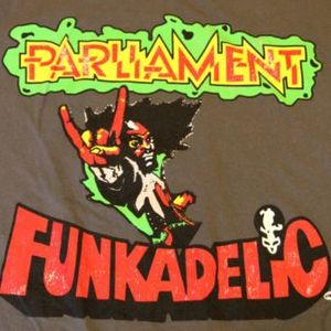 DJ Cochon de Lait - opening for Parliament Funkadelic  NYC 8-22-13