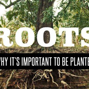 Roots | Empty Jars