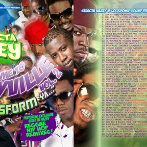 Selecta Hazey - Welcome To Hazeyville Vol. 2 - I Can Transform Ya  (2010)