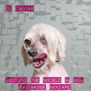 DJ Caviar Around the World in 80hz [Bassmusik Mixtape]