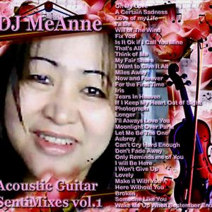 DJ MeAnne - Acoustic Guitar SentiMixes vol. 1