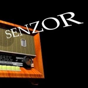 Senzor AM 320