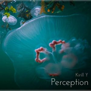 Kirill Y - Perception