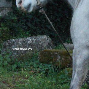 Padre Himalaya #6 by Renato (23/03/16)