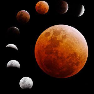 Lunar Attractions