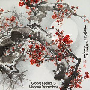 Groove Feeling 13