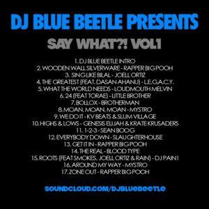 DJ Blue Beetle_Say What Vol 1