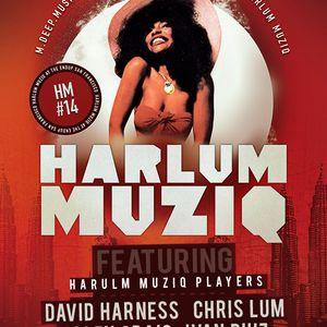 Chris Lum @ The Harlum Muziq Monthly. June 17th, 2012