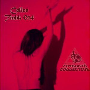 TMBK 014 - Celice