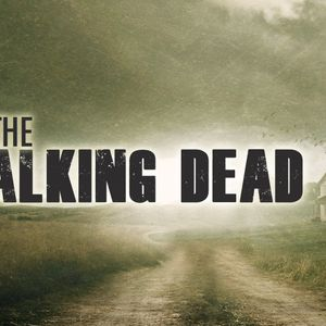 The Walking Dead: The End