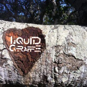 Liquid Giraffe - LA Hoopers Decompression Jam