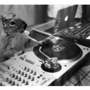 My Neighbor's Chipmunk Stole My DJ Controller