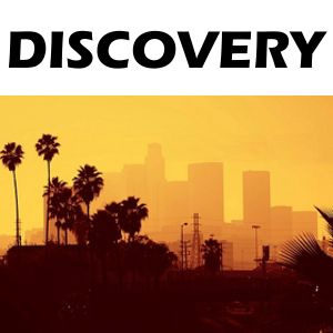 Discovery 31-01-2014