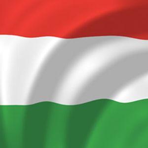Minimal Trip Vol.036 'Hungarian Rhapsody'