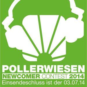 Pollerwiesen Newcomer DJ Contest 2014