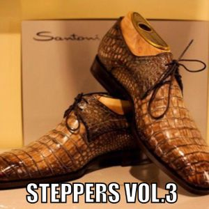 Steppers Vol.3