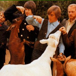 Pet Sounds- 50 years on