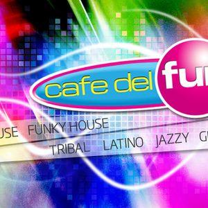 Dj carlo a jeho hodinka house music 48 vocal house funky for Groovy house music