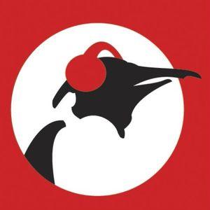 IAMHNK uitzending 11 oktober 2013 | PINGUIN RADIO