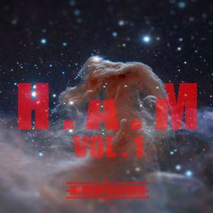 H.A.M Vol. 1