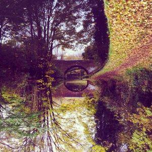 Autumnal Ephemera vol 3