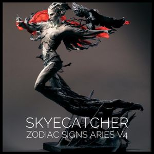 Zodiac Signs Aries Volume 4