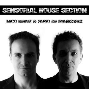 Sensorial House Section # 58    11-07-2013