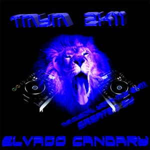 T.M.Y.M. 2K11 The musical Year mix 2k11
