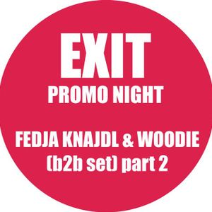 Fedja Knajdl & Woodie b2b (Exit Promo) part 2