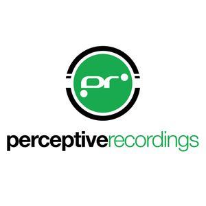 Pure Perceptive 024 - January 2013