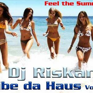 Vibe da Haus Vol.6 mixed by DJ Riskant